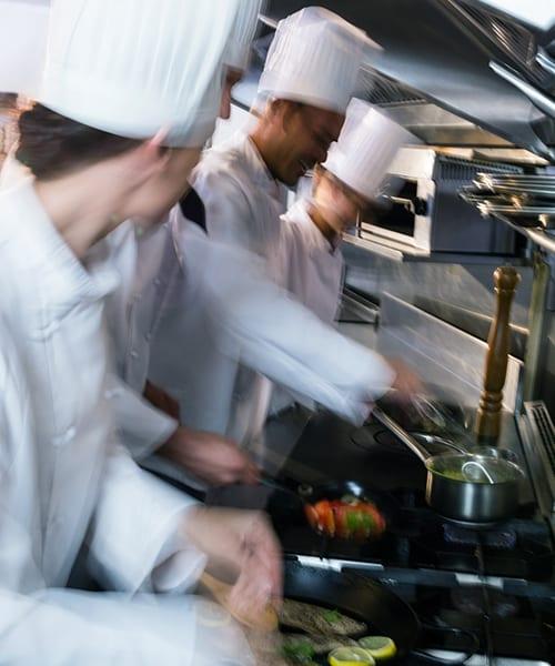 Professionel ovn og blæstkøler til det professionelle køkken