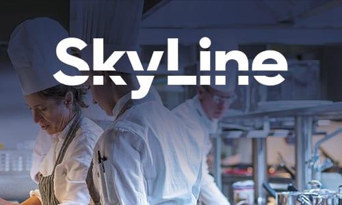 SkyLine – industriovn og blæstkøler