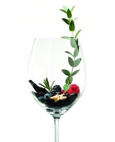 Copa de vino - vinotecas Electrolux Professional
