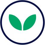 green fryers