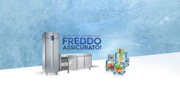 Freddo_assicurato_banner