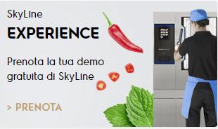 SkyLine Experience