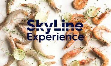 SkyLine Experience Demo