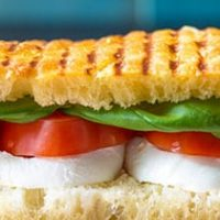 Tomato and mozzarella panini speedelight pep recipe