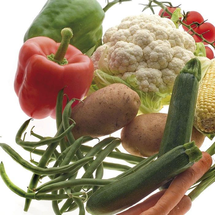 skalningsmaskiner, grönsakstvättar och centrifugeringsmaskiner