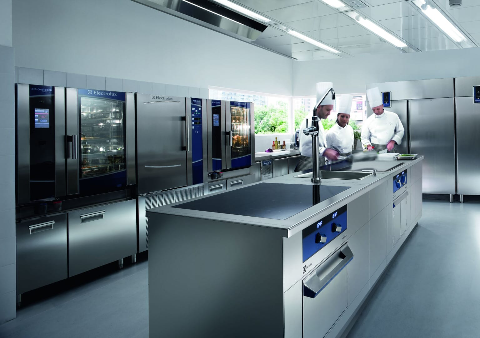 Chefs working in Electrolux Professional kitchen