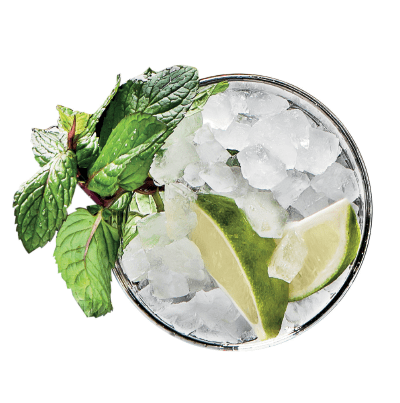 mojito pebble ice makers